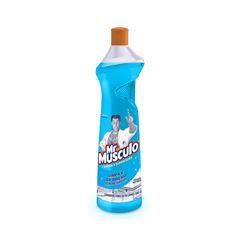 Mr Músculo Limpa Vidros Squeeze 500ml